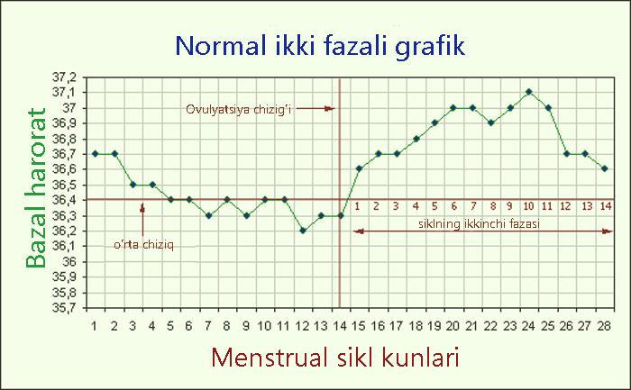 Normal menstrual sikldagi bazal harorat